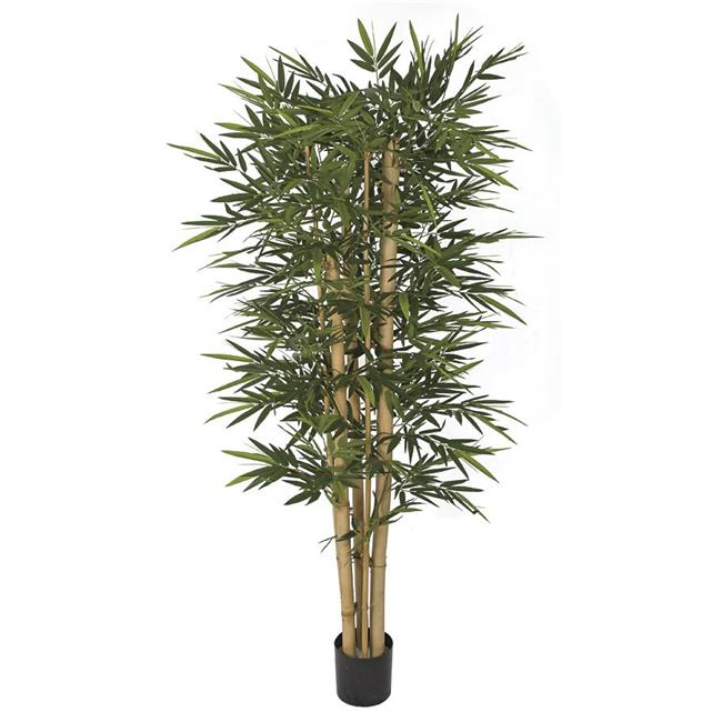 Autograph Foliages W-170300 7 ft. New Bamboo Tree with Thick & Thin Canes, Green