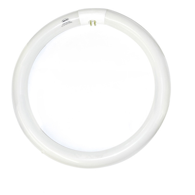 Luxrite 32w FC12T9 Daylight 4-Pin Circline Fluorescent Light Bulb by Luxrite