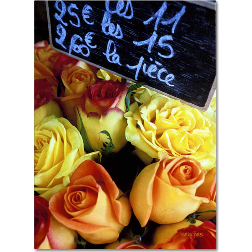 "Trademark Fine Art ""Paris Roses"" Canvas Art by Kathy Yates"