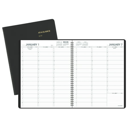 2018 AT-A-GLANCE Weekly Appointment Book/Planner, 13 Months, January Start, 8 1/4
