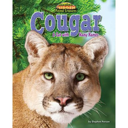 Cougar - Cougar : A Cat with Many Names