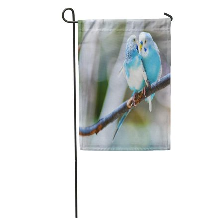 KDAGR Colorful Bird Two Blue Parakeets Perched in Tree Green Love Budgerigar Garden Flag Decorative Flag House Banner 12x18 inch