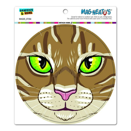 Tabby Cat Face (Brown Tabby Cat Face - Pet Kitty Circle MAG-NEATO'S(TM) Car/Refrigerator)