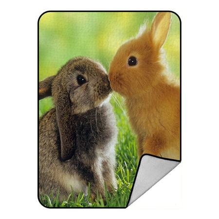GCKG A pair of cute fluffy bunny Rabbits Fleece Blanket Crystal Velvet Front and Lambswool Sherpa Fleece Back Throw Blanket 58x80inches ()