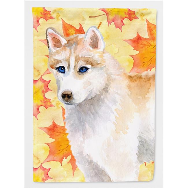 Carolines Treasures BB9957CHF Siberian Husky Grey Fall Flag - Canvas House Size - image 1 de 1