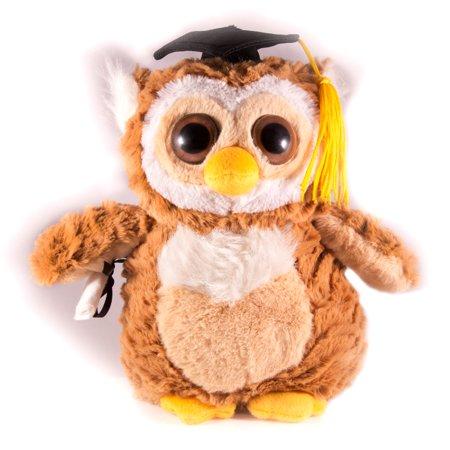 Fiesta Smart Grad Owl w Diploma Graduation Gift Idea 9