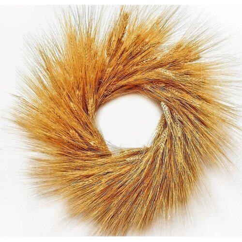 August Grove Glorious 19'' Wheat Wreath