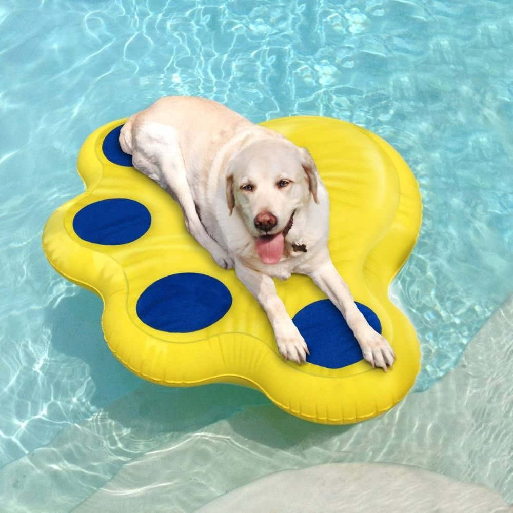 Aqua Jog Water Aerobic Swim Training Belt, Water Flotatio...
