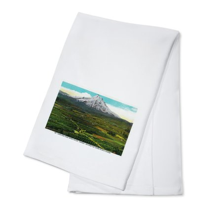 Mt. Hood from Hood River Valley (100% Cotton Kitchen -