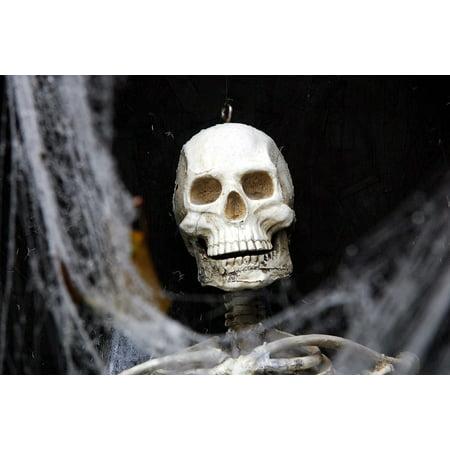Laminated Poster Party Celebration Skull Halloween Bones Poster Print 24 x 36 (Halloween Bones Clip Art)