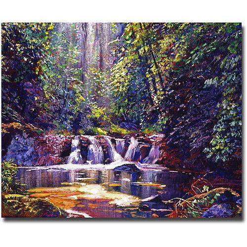 "Trademark Art ""Foaming Water Forest"" Canvas Wall Art by David Lloyd Glover"
