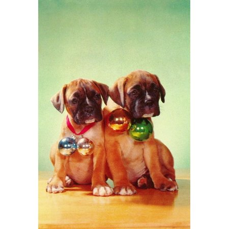 Boxer Puppies with Christmas Bulb Collars Print Wall Art By Found Image (Boxer Puppies For Sale In New England)
