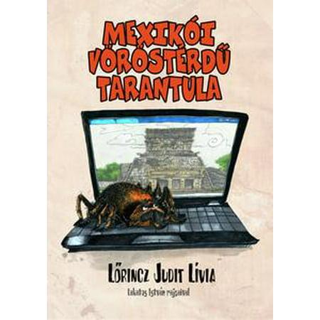 Mexikói vöröstérdű tarantula - eBook