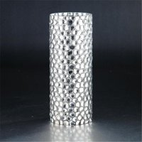 12 x 4.5 in. Glass Vase, Silver