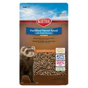 Best Ferret Foods - Kaytee Ferret Diet -- Chicken 4 lb Review