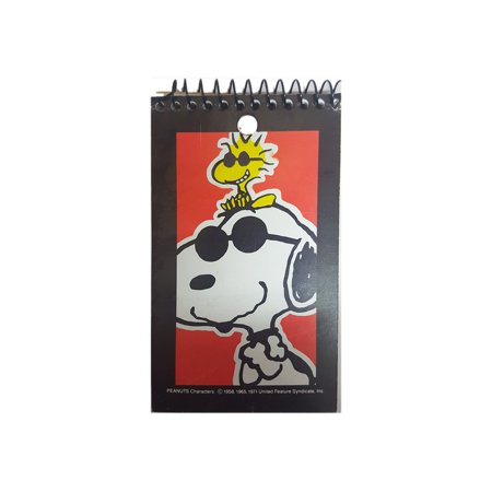 Snoopy Summer (Vintage 1990 Snoopy 3