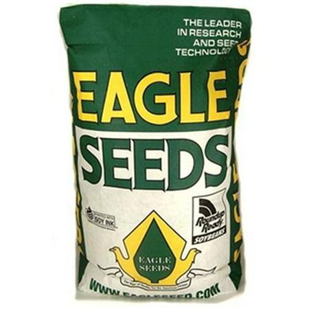 Big Fellow RR Soybean Seed - 15 Lbs.