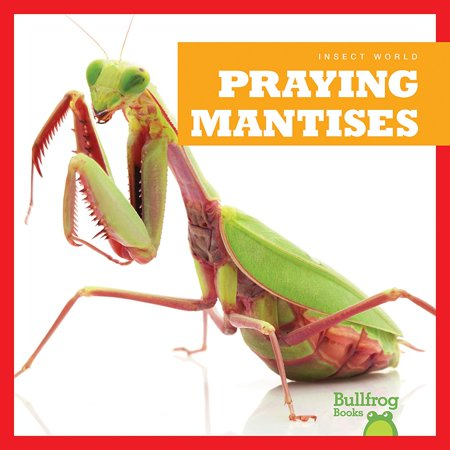 Praying Mantises