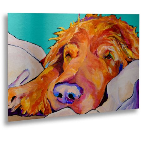 """Trademark Fine Art """"Snoozer King"""" Canvas Art by Pat Saunders-White, Floating Brushed Aluminum 16x22"""