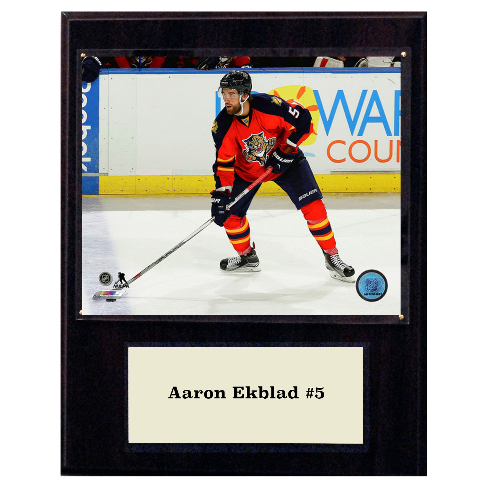 C&I Collectables NHL 12x15 Aaron Ekblad Florida Panthers Player Plaque