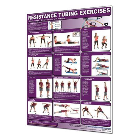 Productive Fitness CRTLL Resistance Tubing Back, Legs, Biceps, Chest and Triceps -