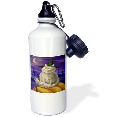Halloween Decorated Water Bottles (3dRose Creepy And Cute Halloween Kitty Cat, Sports Water Bottle,)