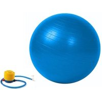 Strength Exercise Stability Ball Gym Balance Ball Balance Chair Fitness Chair Stability Ball Chair Pregnancy Ball with Pump 55cm Blue, Strengthen, stretch and.., By Bespolitan Sports