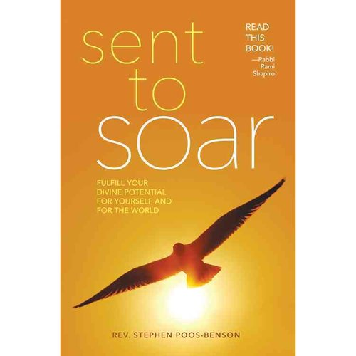 Sent to Soar: Fulfill Your Divine Potential for Yourself and for the World