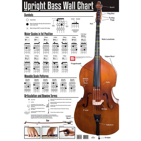 Mel Bay Upright Bass Wall -