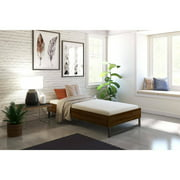"Signature Sleep Memoir 6"" Memory Foam Mattress"