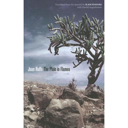 Joe R. and Teresa Lozana Long Series in Latin American and Latino Art and Culture (Paperback): The Plain in Flames (Paperback) Lunt Early American Plain