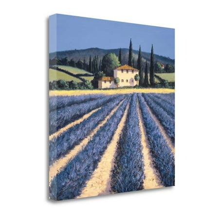 Colors of Summer by David Short, Gallery Wrap Canvas Art printed on heavy museum grade canvas. - image 1 de 1