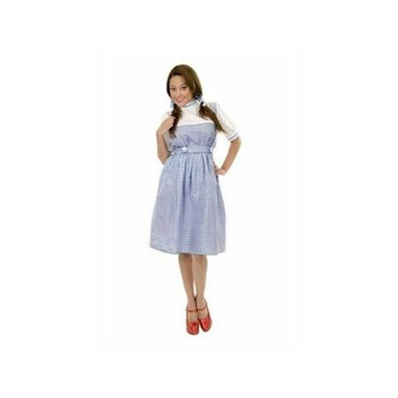 Teen Dorothy Costume for $<!---->