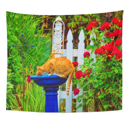 Tabby Cat Tapestry (UFAEZU Orange Tabby Cat Drinking Out The Bird Bath Wall Art Hanging Tapestry Home Decor for Living Room Bedroom Dorm 51x60 inch)
