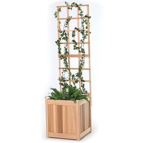 All Things Cedar PL20U-T 20-in Planter with Trellis Set
