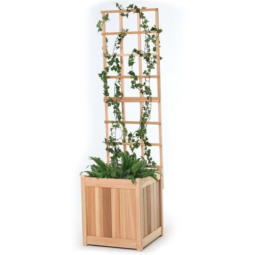 All Things Cedar PL20U-T 20-in Planter with Trellis Set
