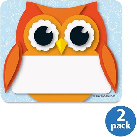(2 Pack) Carson-Dellosa Colorful Owl Name Tags](Halloween Name Tags)