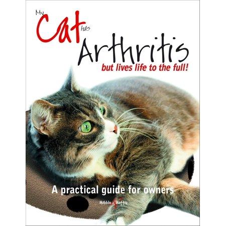 My cat has arthritis ... - eBook (My Dog Has Arthritis In Back Legs)