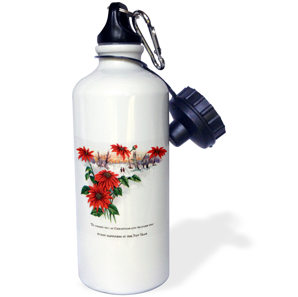 3dRose Pretty Winter scene Bright Red Poinsettias and Christmas Greetings, Sports Water Bottle, 21oz by Supplier Generic