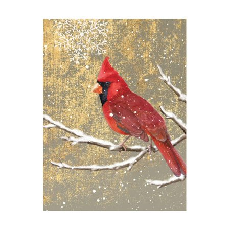 Color Art Print - Winter Birds Cardinal Color Print Wall Art By Beth Grove