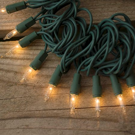 Outdoor String Lights String Lights 46 Feet Green Wire Outdoor Twinkle Controller Warm White ...