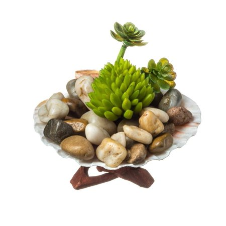 Faux Succulent Terrarium Kit Rocky Shore Complete Diy Gift Set Decorative Wood Display With Faux Succulent