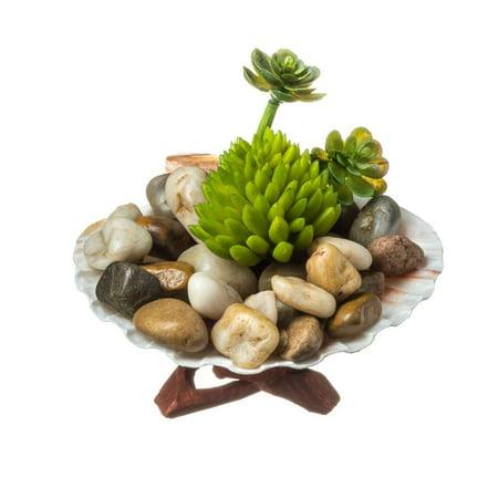 Faux Succulent Terrarium Kit Rocky Shore Complete Diy Gift Set