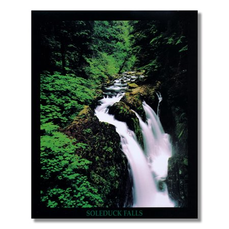 Soleduck Waterfall Olympic National Park Photo Wall Picture 8x10 Art - Olympic Baseball Wall Art