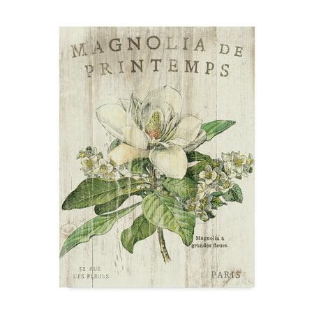 Trademark Fine Art 'Magnolia de Printemps' Canvas Art by Sue Schlabach ()
