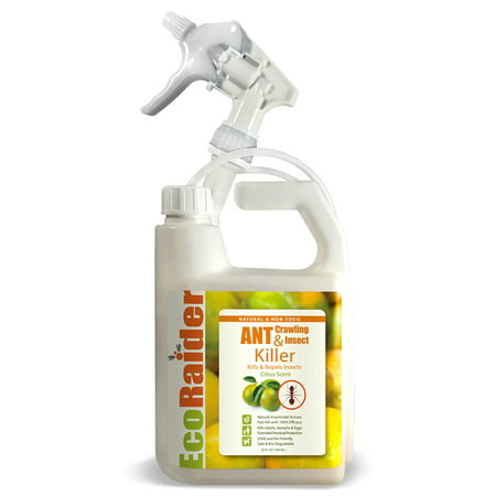 EcoRaider Ant Killer (32 oz) with Remote Trigger Sprayer, Instant Kill + 4-Weeks Prevention, Non-Toxic + Child and Pet