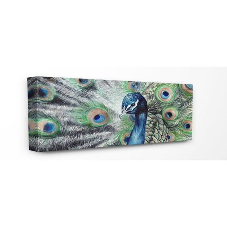 The Stupell Home Decor Collection Elegant Feathers Painted Peacock Stretched Canvas Wall Art, 10 x 1.5 x 24](Feather Wall Art)