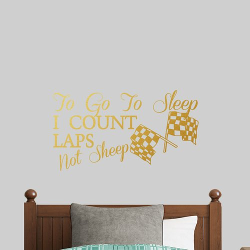 Zoomie Kids Imhoff To Go To Sleep I Count Laps Wall Decal