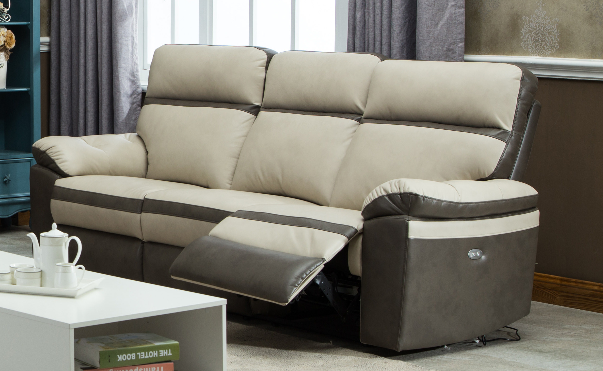Gordon Motion Two Tone Leather Air Electric Power Dual Recliner Sofa