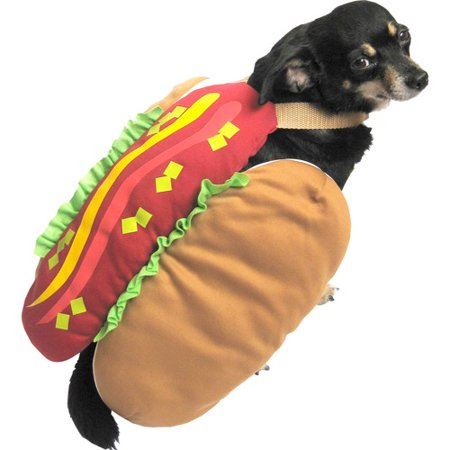 Instead, shop Walmart Canada to find dog Halloween costumes that make you and your whole family roll on the floor laughing. You have a variety of options when choosing a costume for dogs, but popular choices include Star Wars characters like Darth Vader, police officers, firefighters and teddy bears.